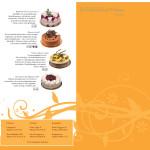 graphic-design-steinbrenner-broschure-01-2011