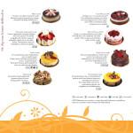 graphic-design-steinbrenner-broschure-02-2011