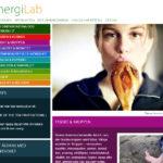 web-design-energilab-07
