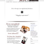 web-design-michael-sodermalm-2013-01