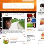 web-design-starkare-rewind-2010-new-navigation-09-00-v2