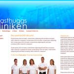 web-design-masthuggskliniken-site-2011-v01-03-1024x657