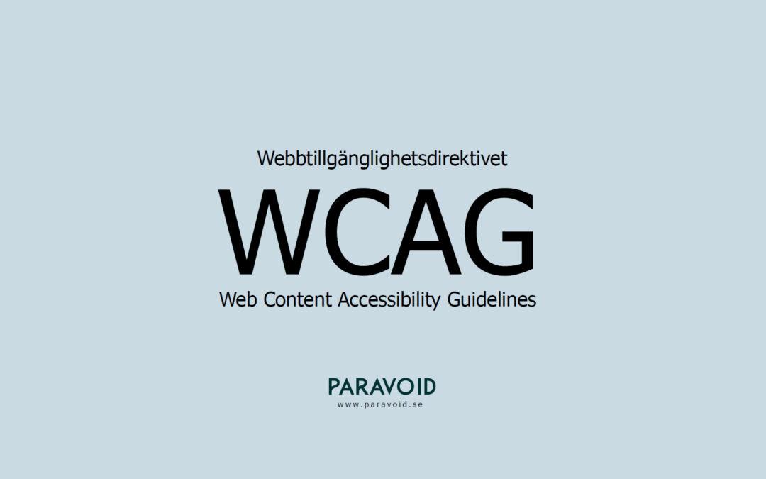 Presentation om webbtillgänglighet som PDF